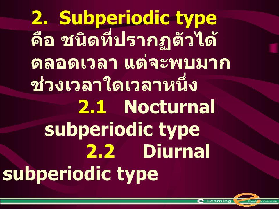 2. Subperiodic type คือ ชนิดที่ปรากฏตัวได้ตลอดเวลา แต่จะพบมากช่วงเวลาใดเวลาหนึ่ง. 2.1 Nocturnal subperiodic type.