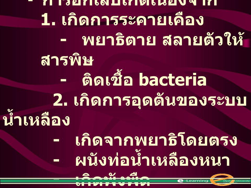 - พยาธิตาย สลายตัวให้สารพิษ - ติดเชื้อ bacteria