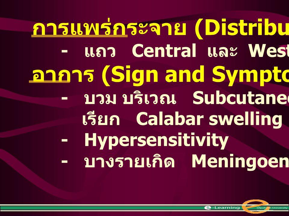 การแพร่กระจาย (Distribution) อาการ (Sign and Symptom)