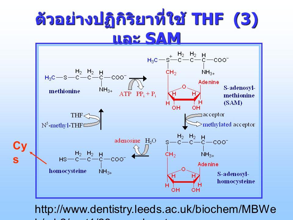 ตัวอย่างปฏิกิริยาที่ใช้ THF (3) และ SAM