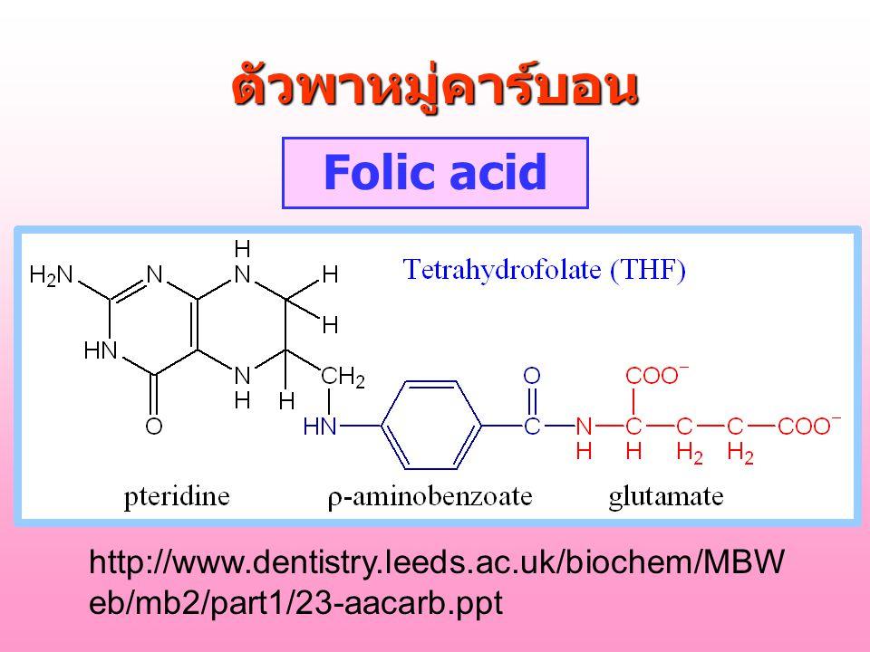 ตัวพาหมู่คาร์บอน Folic acid