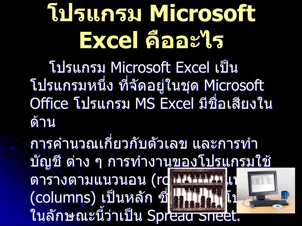 โปรแกรม Microsoft Excel คืออะไร