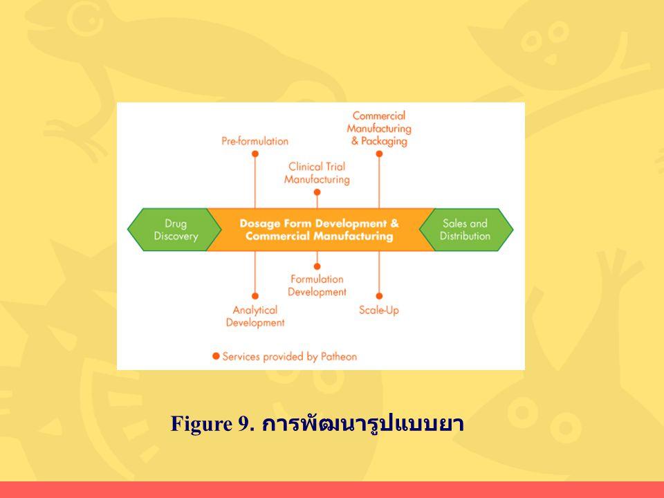 Figure 9. การพัฒนารูปแบบยา