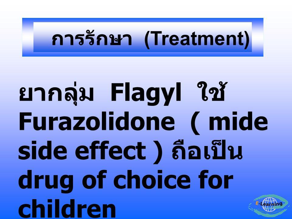 การรักษา (Treatment) ยากลุ่ม Flagyl ใช้ Furazolidone ( mide side effect ) ถือเป็น drug of choice for children.