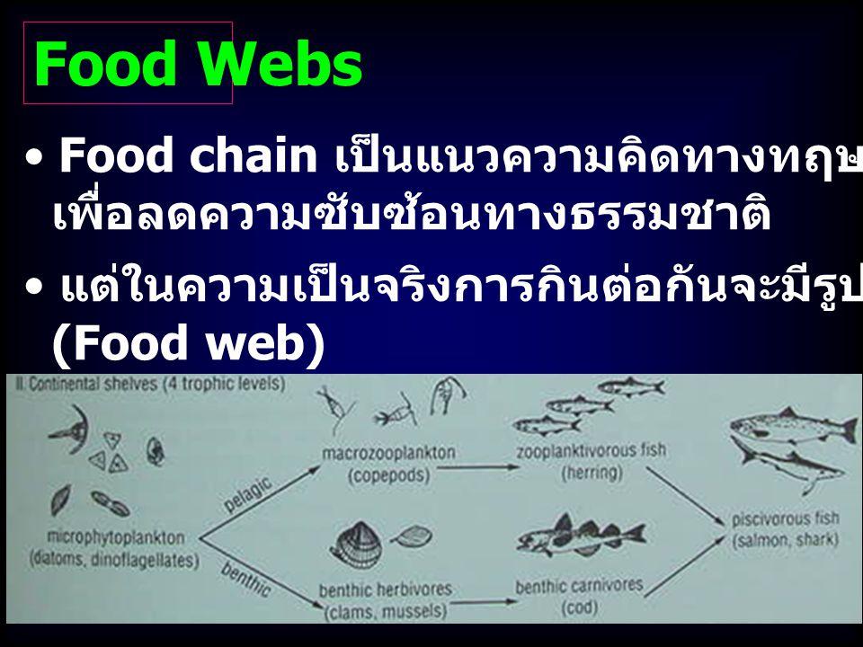 Food Webs Food chain เป็นแนวความคิดทางทฤษฎีที่สะดวก