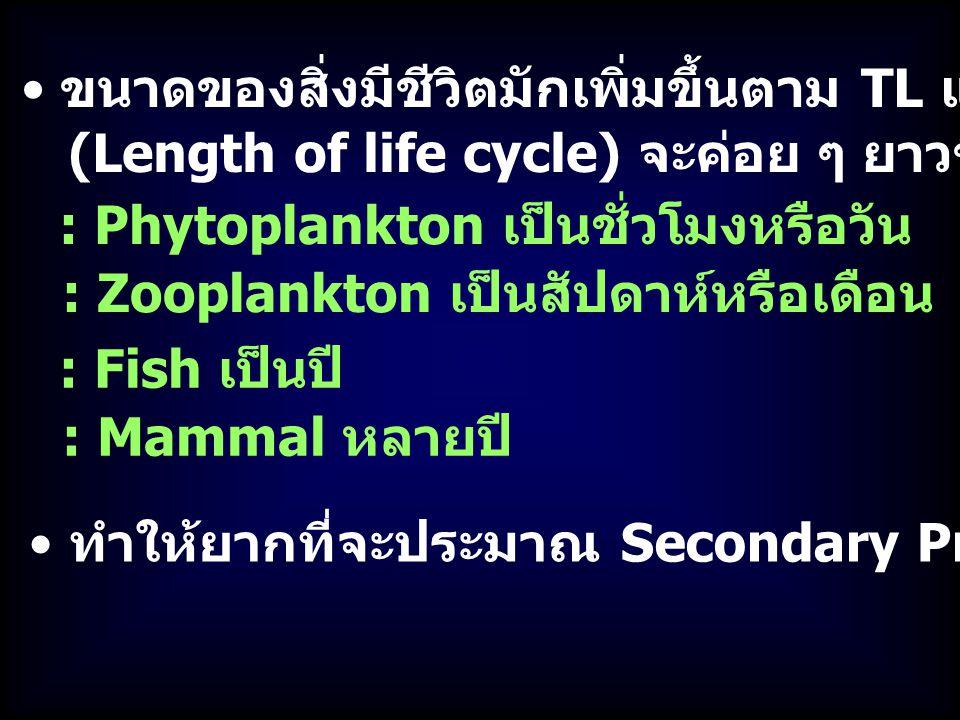 ขนาดของสิ่งมีชีวิตมักเพิ่มขึ้นตาม TL แต่ Generation time