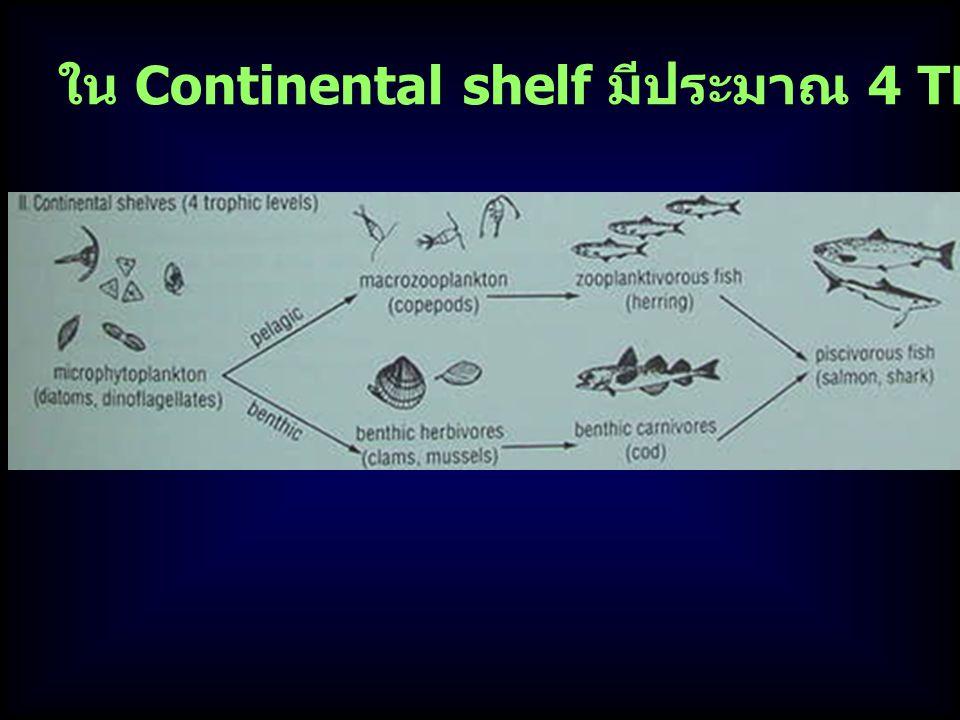 ใน Continental shelf มีประมาณ 4 TL