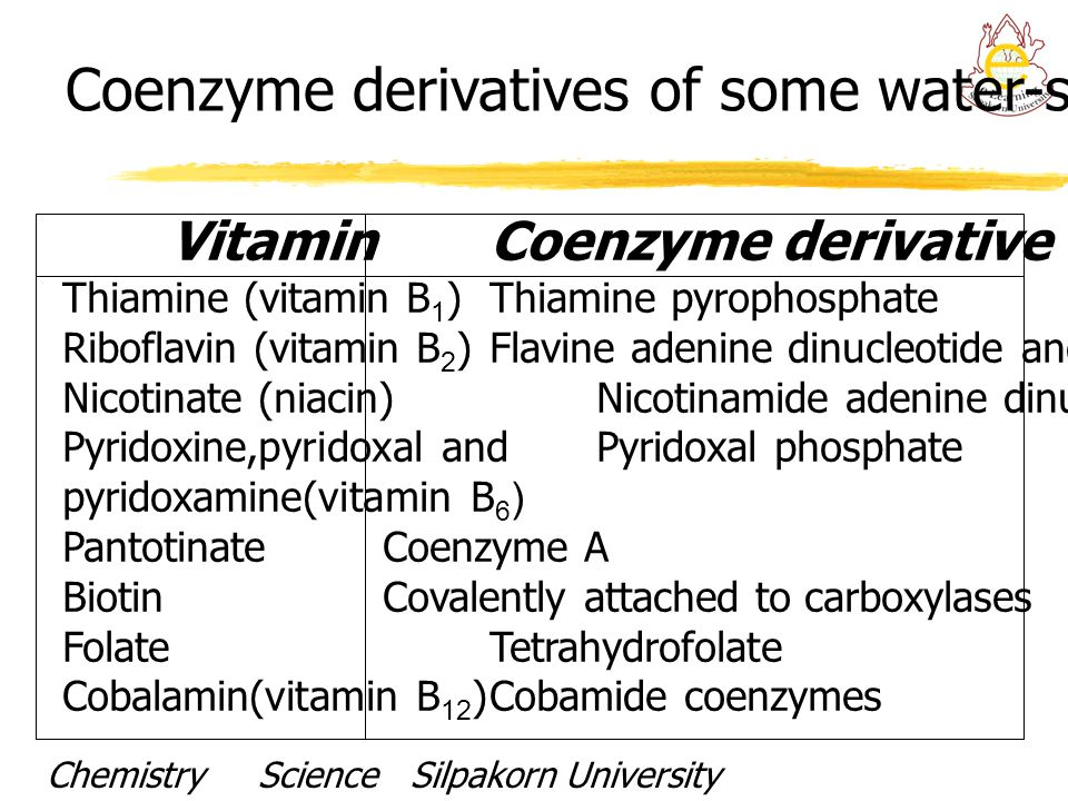 Coenzyme derivatives of some water-soluble vitamins