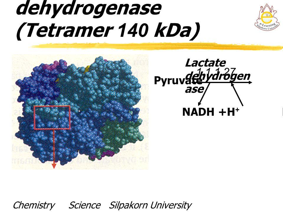 Structure of Lactate dehydrogenase (Tetramer 140 kDa)