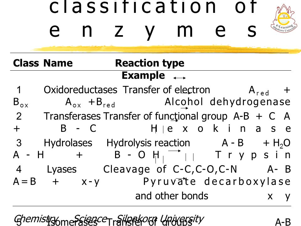 International classification of enzymes