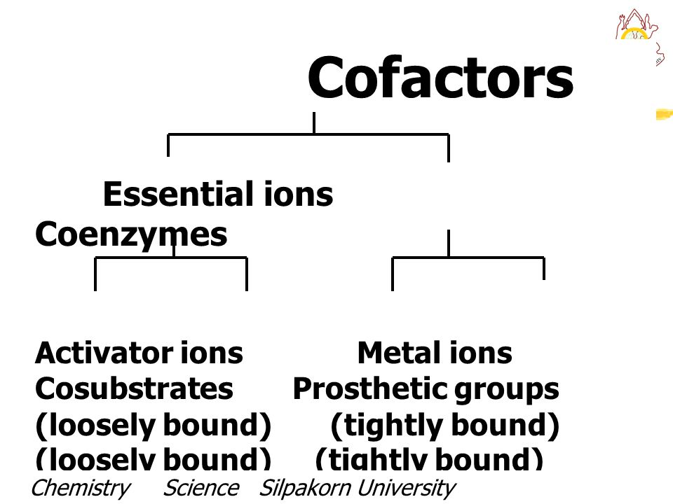 Activator ions Metal ions Cosubstrates Prosthetic groups