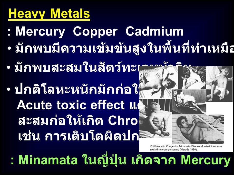Heavy Metals : Mercury Copper Cadmium. มักพบมีความเข้มข้นสูงในพื้นที่ทำเหมืองแร่ใกล้/ในทะเล. มักพบสะสมในสัตว์ทะเลหน้าดิน.