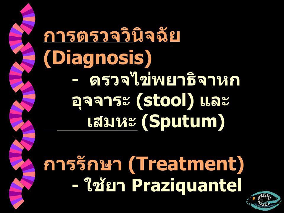การตรวจวินิจฉัย (Diagnosis)