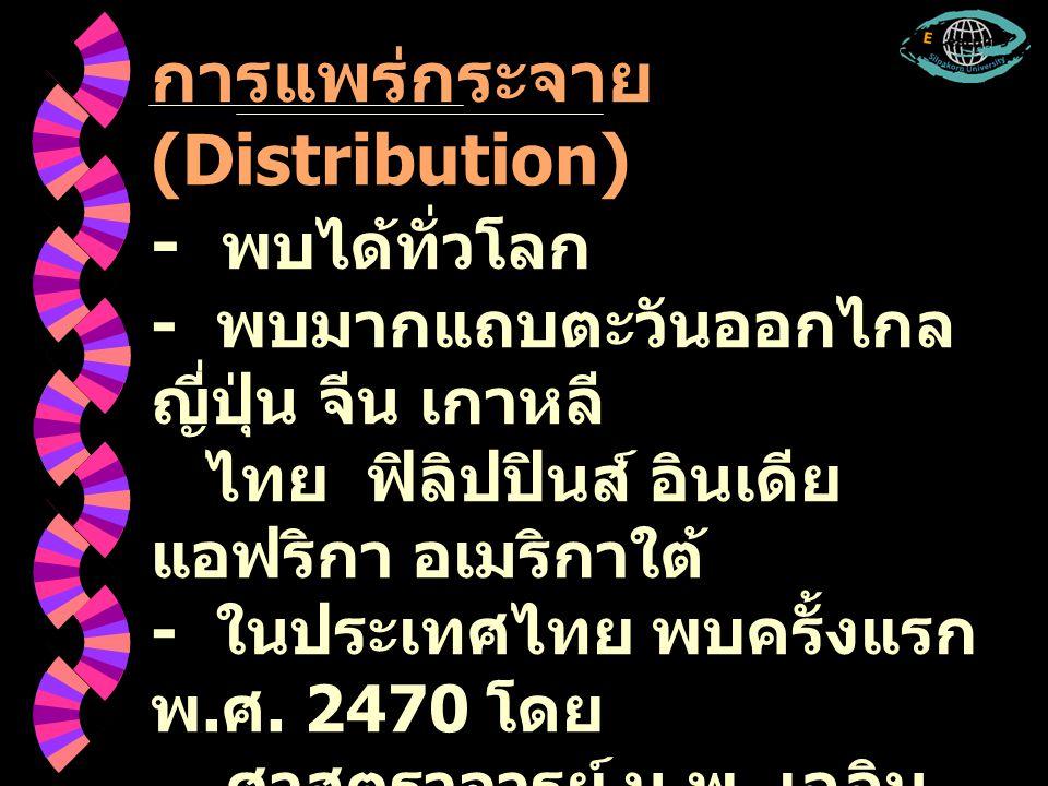 การแพร่กระจาย (Distribution) - พบได้ทั่วโลก