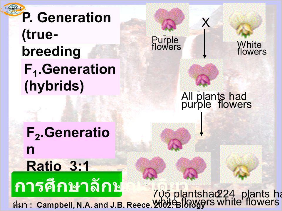 การศึกษาลักษณะเดียว P. Generation (true-breeding parents)