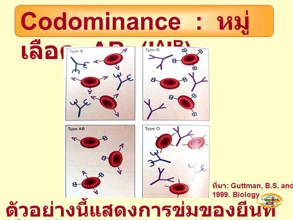 Codominance : หมู่เลือด AB (IAIB)