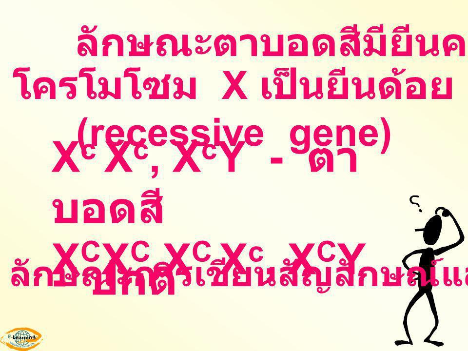 โครโมโซม X เป็นยีนด้อย (recessive gene)