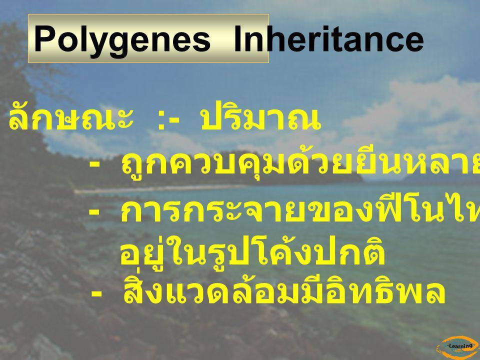 Polygenes Inheritance