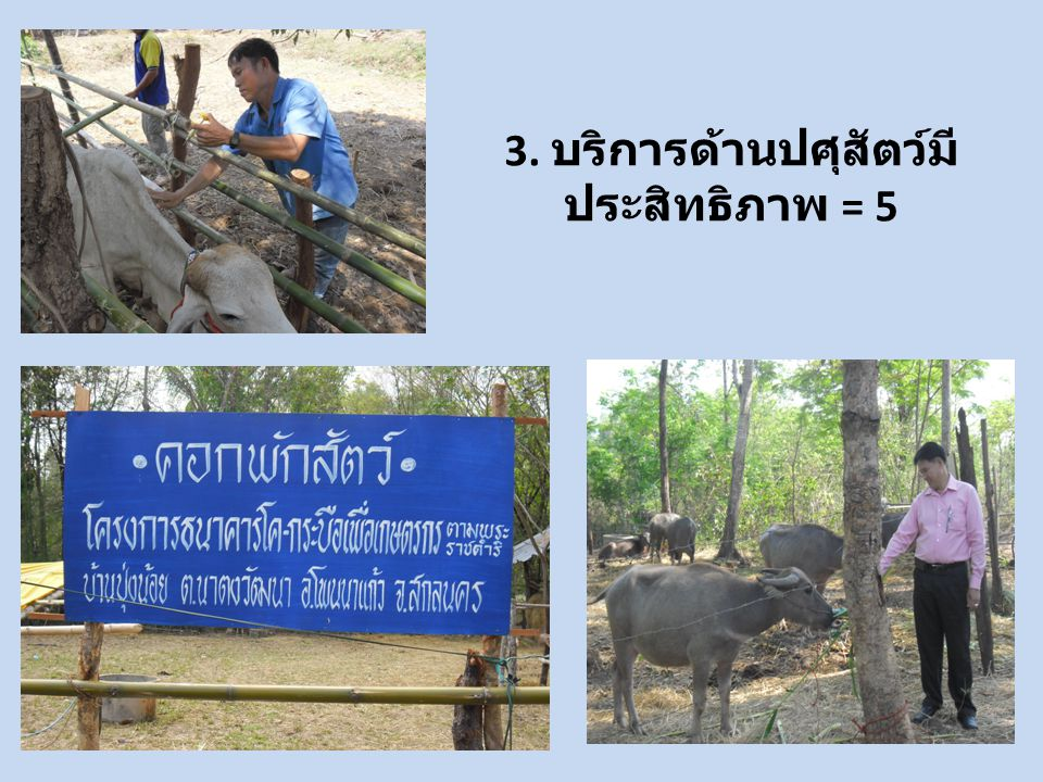 3. บริการด้านปศุสัตว์มีประสิทธิภาพ = 5