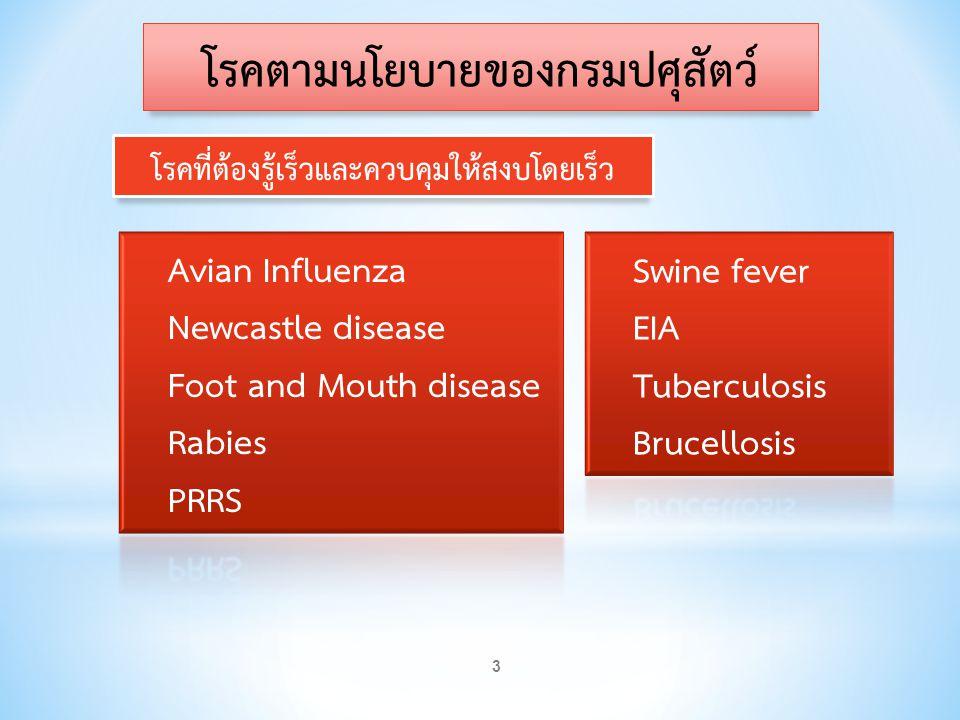 โรคตามนโยบายของกรมปศุสัตว์ โรคที่ต้องรู้เร็วและควบคุมให้สงบโดยเร็ว