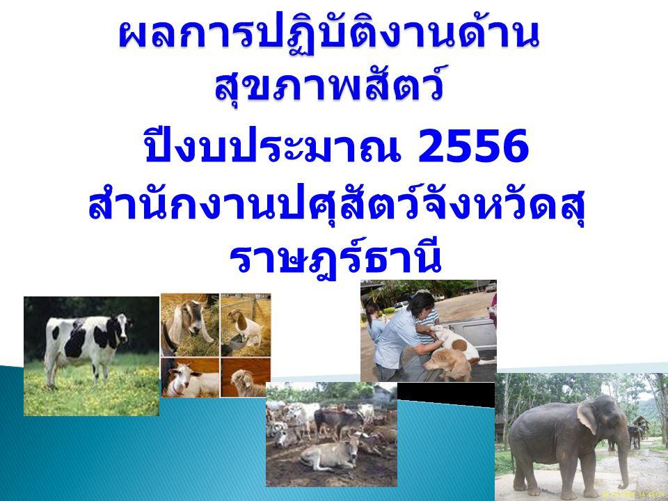 ผลการปฏิบัติงานด้านสุขภาพสัตว์