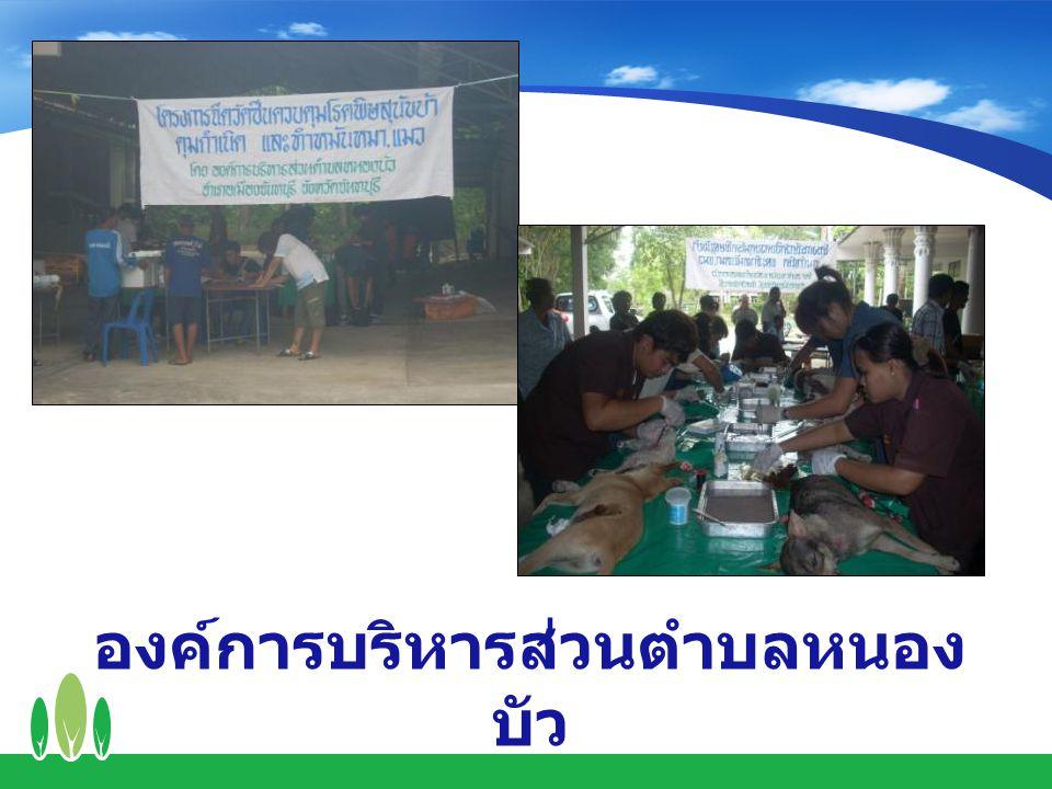 องค์การบริหารส่วนตำบลหนองบัว