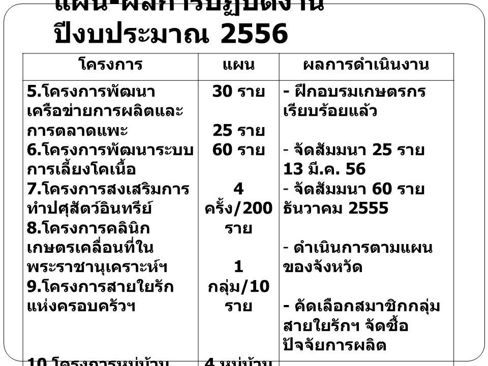 แผน-ผลการปฏิบัติงาน ปีงบประมาณ 2556