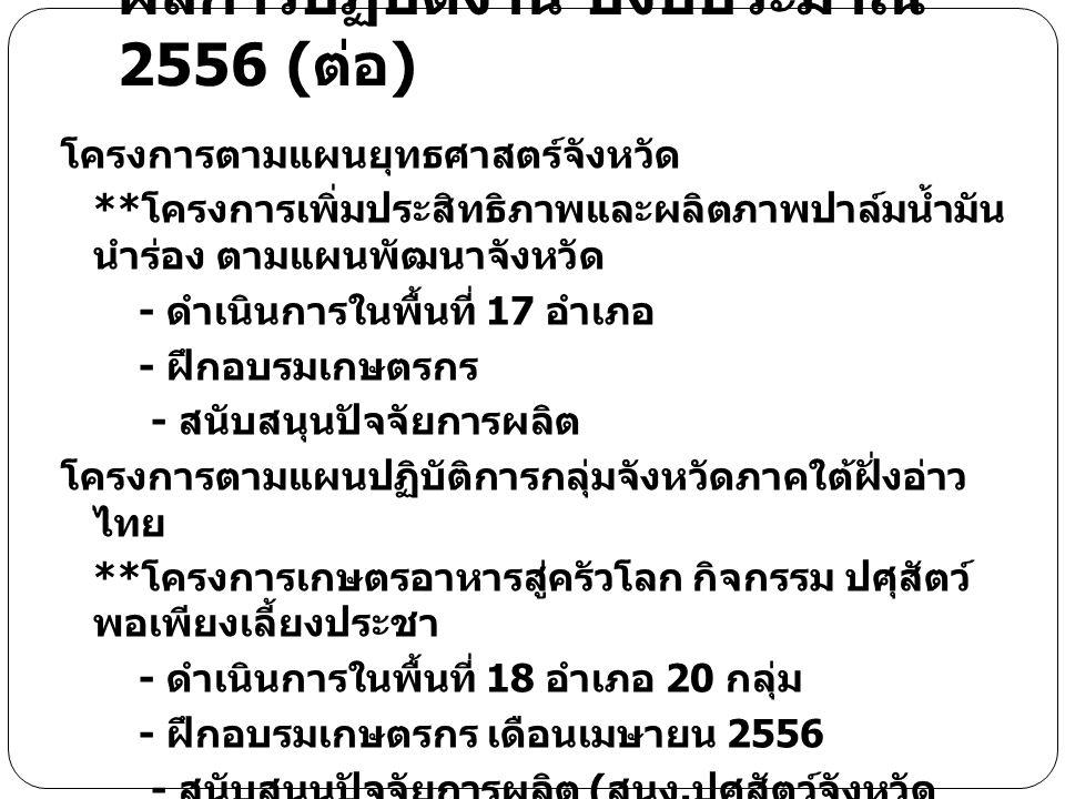 ผลการปฏิบัติงาน ปีงบประมาณ 2556 (ต่อ)