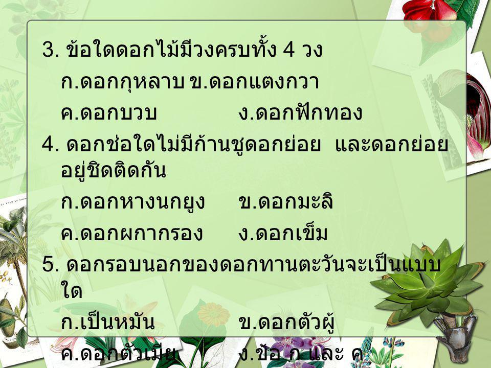 3. ข้อใดดอกไม้มีวงครบทั้ง 4 วง