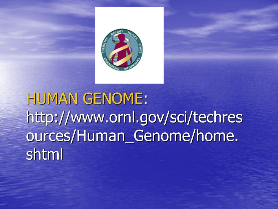 HUMAN GENOME: http://www.ornl.gov/sci/techresources/Human_Genome/home.shtml