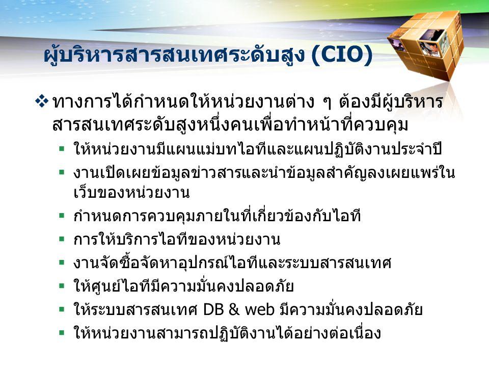 ผู้บริหารสารสนเทศระดับสูง (CIO)