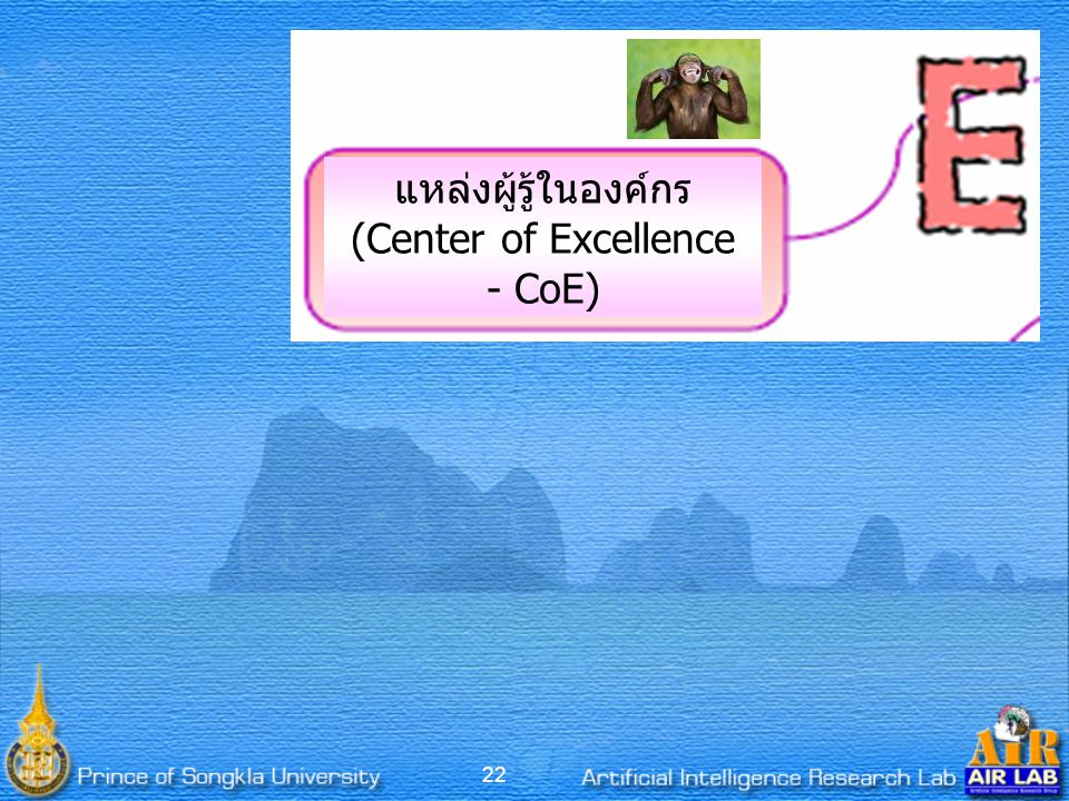 (Center of Excellence - CoE)