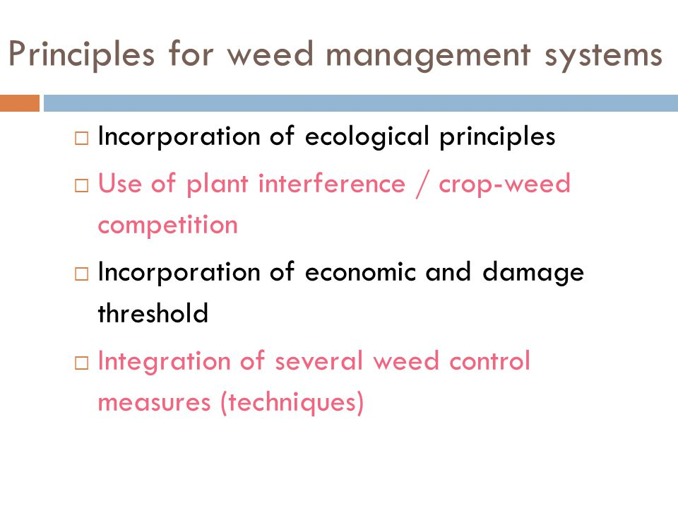 Principles for weed management systems
