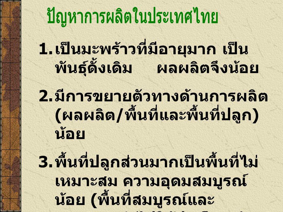 ปัญหาการผลิตในประเทศไทย