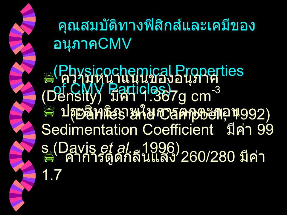 คุณสมบัติทางฟิสิกส์และเคมีของอนุภาคCMV