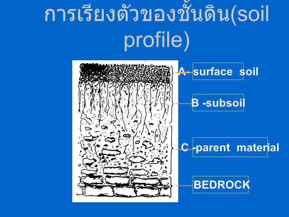 การเรียงตัวของชั้นดิน(soil profile)