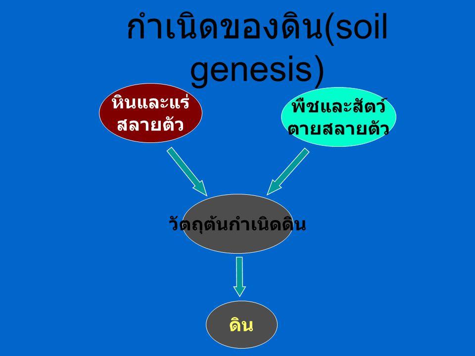 กำเนิดของดิน(soil genesis)