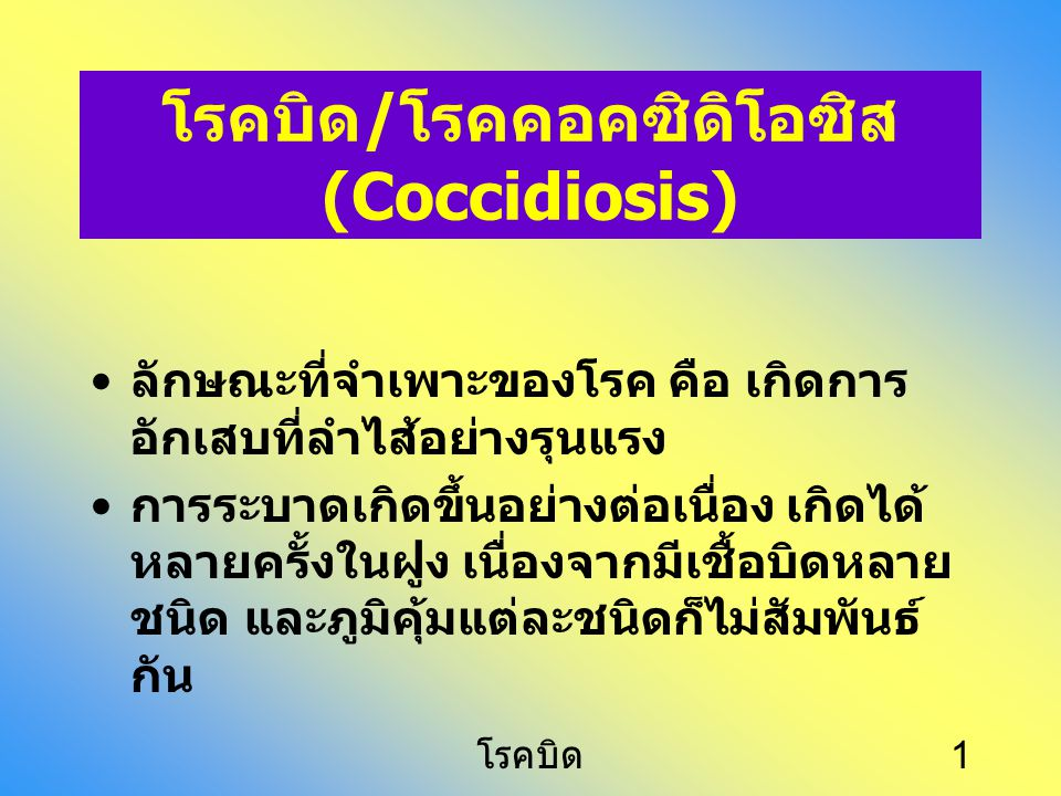 โรคบิด/โรคคอคซิดิโอซิส (Coccidiosis)