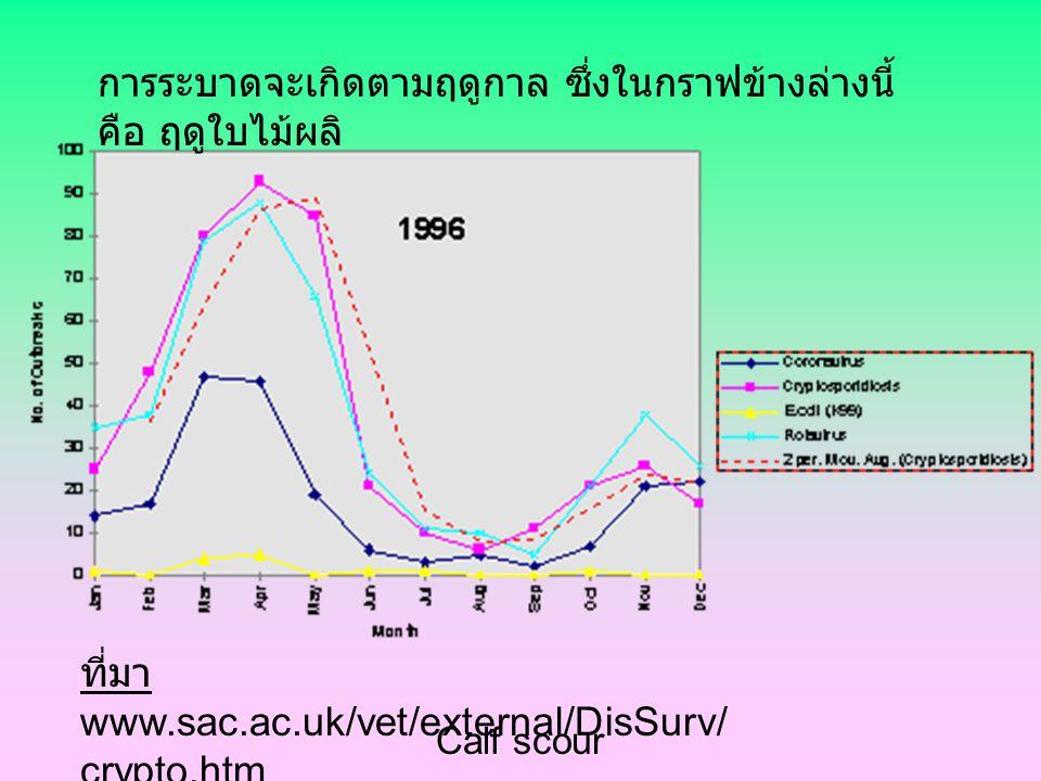 การระบาดจะเกิดตามฤดูกาล ซึ่งในกราฟข้างล่างนี้ คือ ฤดูใบไม้ผลิ