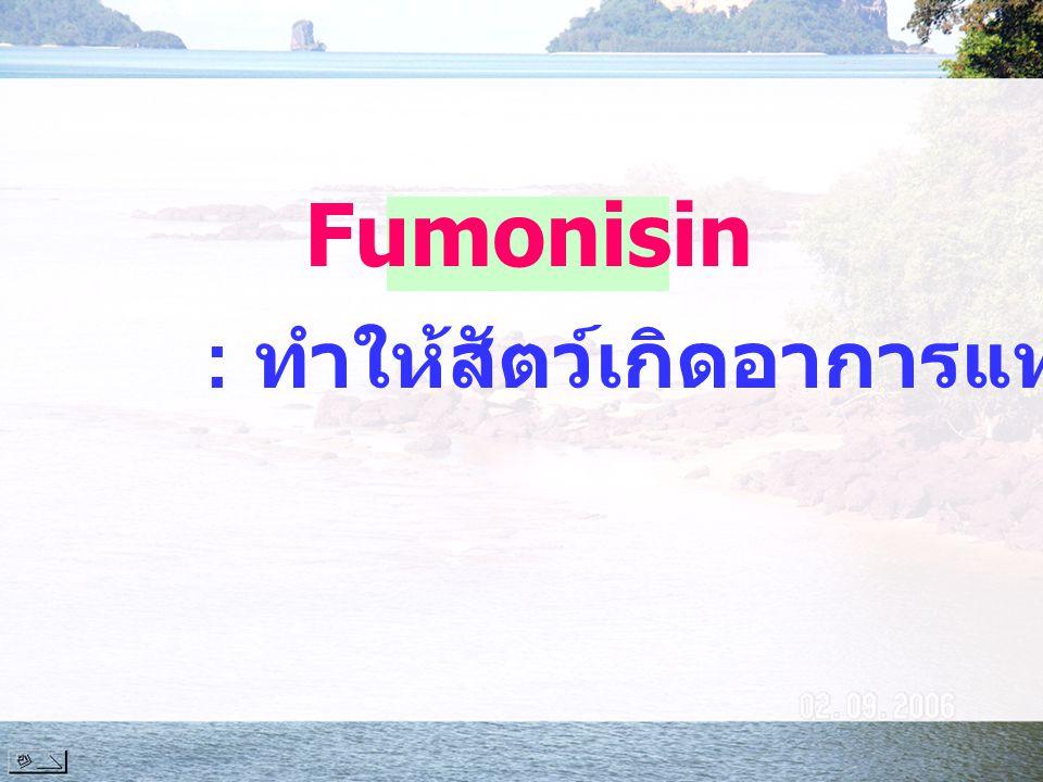 Fumonisin : ทำให้สัตว์เกิดอาการแท้งลูก
