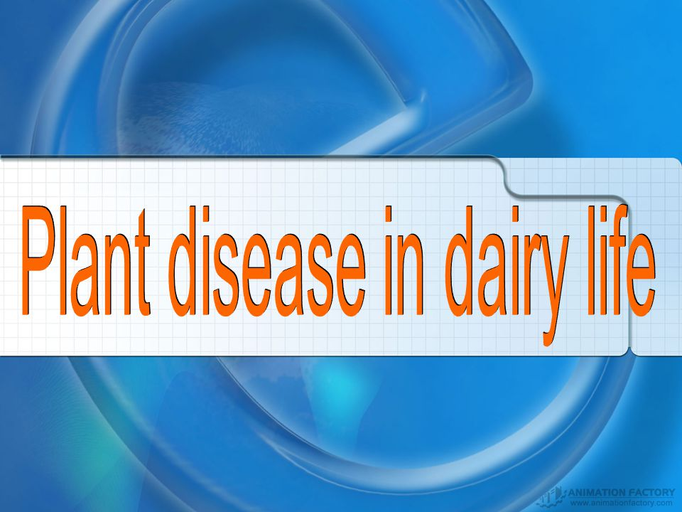 Plant disease in dairy life