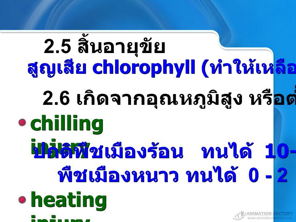chilling injury heating injury 2.5 สิ้นอายุขัย
