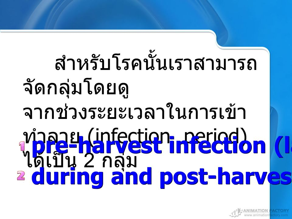 pre-harvest infection (latent infection)