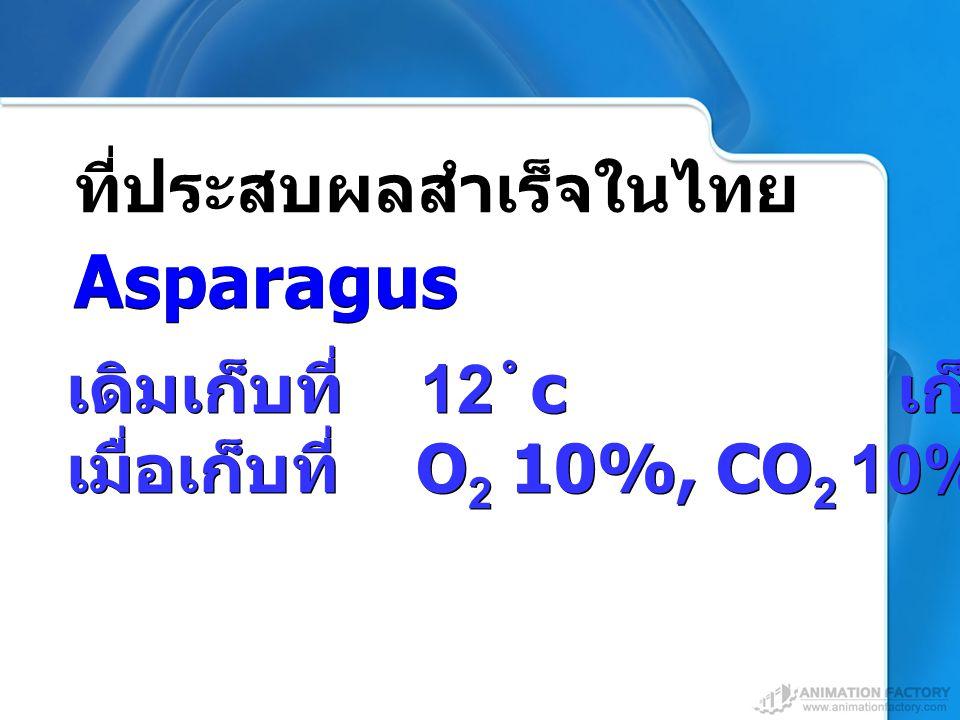 Asparagus ที่ประสบผลสำเร็จในไทย เดิมเก็บที่ 12 c เก็บได้ 7 วัน