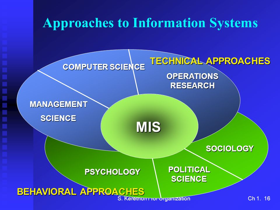 Approaches to Information Systems