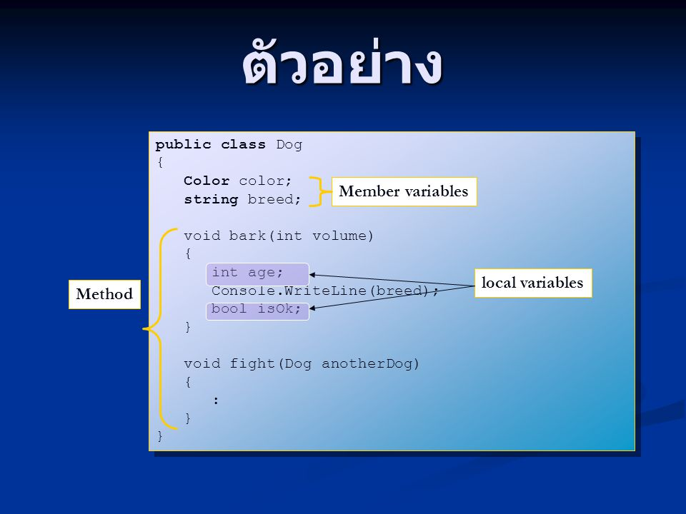 ตัวอย่าง Member variables local variables Method public class Dog {