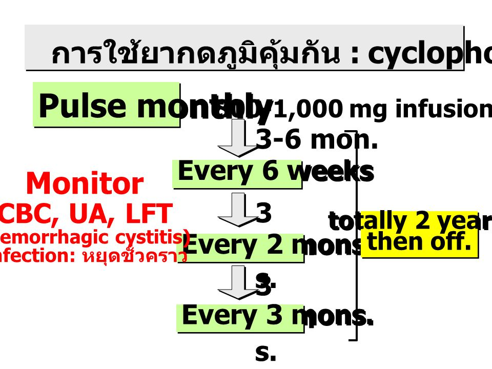 (hemorrhagic cystitis) Infection: หยุดชั่วคราว