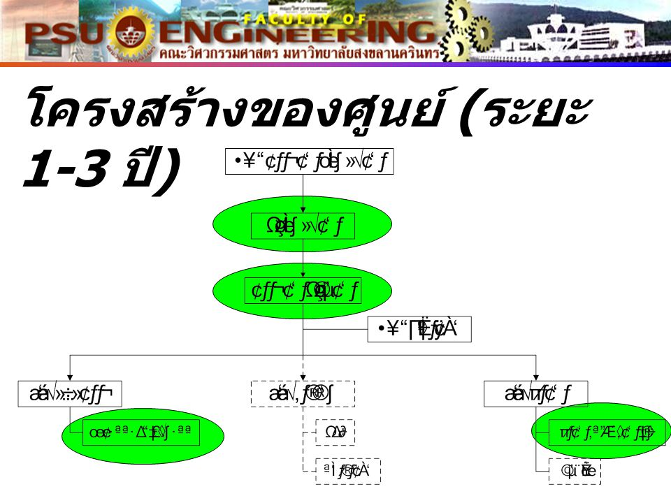 โครงสร้างของศูนย์ (ระยะ 1-3 ปี)