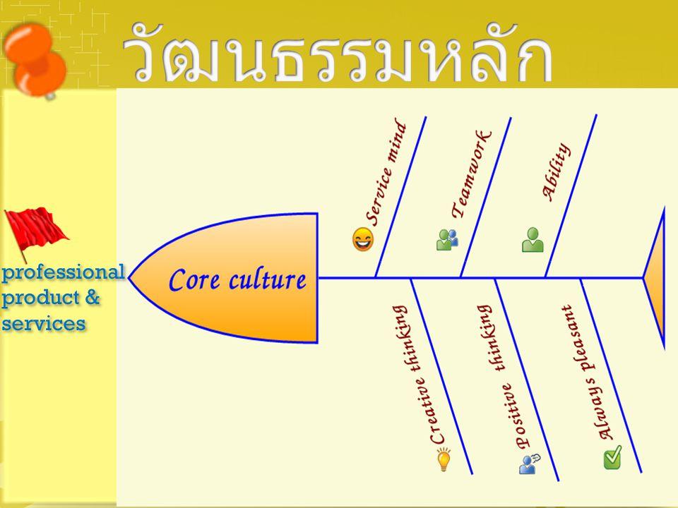 วัฒนธรรมหลัก professional product & services