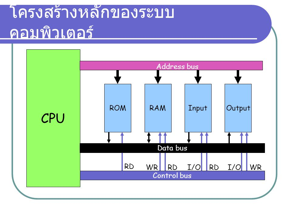 โครงสร้างหลักของระบบคอมพิวเตอร์